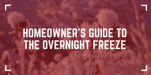 Homeowner's Guide to the Overnight Freeze - Overnight Freeze